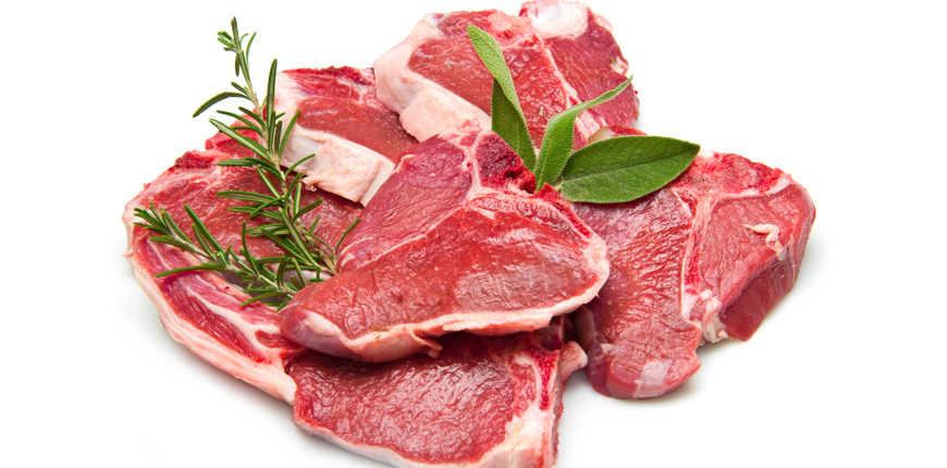 Lamb Chop Dog Lamb Loin Chops Raw